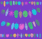 Festive and Party decoration with Tropical Leaves. Template for the holidays Royalty Free Stock Photography