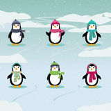 Festive Penguins. Illustration of six adorable penguins wearing hats and scarves in a winter scene Royalty Free Stock Photo
