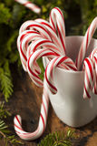 Festive Peppermint Candy Canes Royalty Free Stock Photography