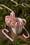 Festive Peppermint Candy Canes Royalty Free Stock Photos