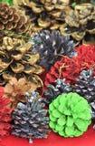 Festive pine cones Royalty Free Stock Photos