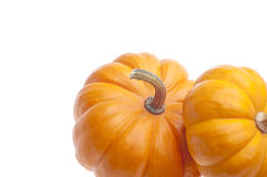 Festive Pumpkin Border Stock Photos