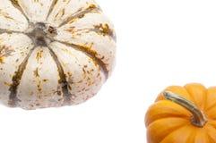 Festive Pumpkin Border Stock Images