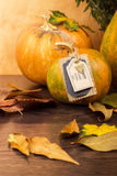 Festive pumpkin on Thanksgiving Day Stock Photography