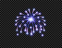 Festive purple firework salute burst, flash on transparent checkered background.  illustration. Festive purple firework salute burst, flash on transparent Stock Photos