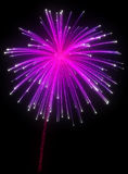 Festive purple fireworks at night. Over black background Stock Photo