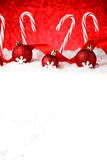 Festive Red and White Peppermint Candy Canes Stock Photography