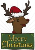 Festive Reindeer with Santa`s Cap and Greeting Message for Christmas, Vector Illustration royalty free illustration