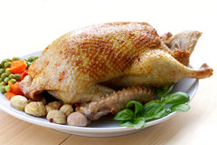 Festive roast duck with carrot,pea and chestnuts Stock Photos