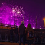 Festive salute of fireworks on New Year's night. On January 1, 2016 in Amsterdam - Netherland. Royalty Free Stock Photos