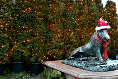 Festive scene at the Butchart Gardens Royalty Free Stock Photography
