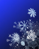 Festive snowflakes Royalty Free Stock Image