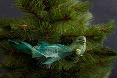 Festive sparkling green bird on the Christmas tree stock images