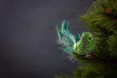 Festive sparkling green bird on the Christmas tree stock image