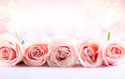 Flower composition with roses stock images