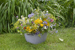 Festive summer bouquet Royalty Free Stock Photography