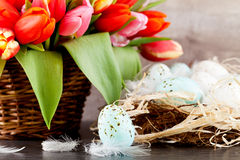 Festive traditional easter egg decoration ribbon and tulips Royalty Free Stock Photos