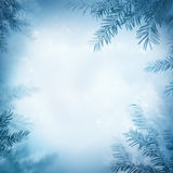 Festive winter background Stock Photos