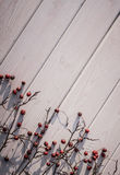 Festive winter background. White wood and red winter berries of hawthorn Royalty Free Stock Photography