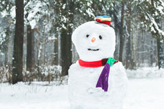 Festive winter three-ball snowman with smiley face and carrot nose Stock Photos