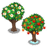 Festively decorated trees with glowing garland. Vector illustration on white background Royalty Free Stock Photography