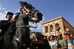 Festividad 029 del caballo de San Juan imagen de archivo