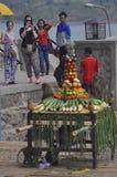 Festività della scimmia Fotografia Stock