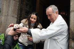 Festiviteit van St.ANTON. Madrid.SPAIN Royalty-vrije Stock Afbeeldingen