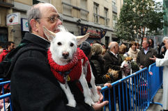 Festiviteit van St.ANTON. Madrid.SPAIN Stock Afbeeldingen