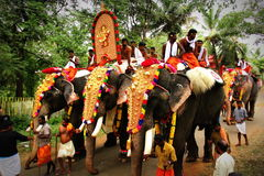 Festiwal Kerala Fotografia Royalty Free