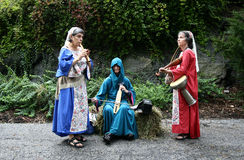 festiwal średniowieczny nowy York Obrazy Stock