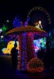 festiwalu światło obrazy stock