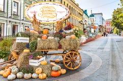 Festiwalu ` jesieni Złoty ` od serii ` Moskwa przyprawia ` w Moskwa Fotografia Royalty Free