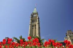 festiwalu Ottawa tulipan Zdjęcia Stock