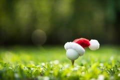 Festlich-aussehender Golfball auf T-Stück mit Weihnachtsmanns Hut lizenzfreie stockfotos