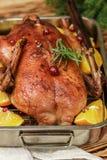Festliche Ente backte mit Orangen, Moosbeeren, Rosmarin und Gewürz Stockbild