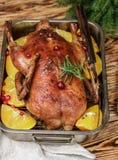 Festliche Ente backte mit Orangen, Moosbeeren, Rosmarin und Gewürz Lizenzfreie Stockfotos