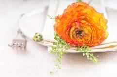 Festliche Tabelleneinstellung mit Blumen Stockfotos