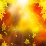 Festlicher Autumn Leaves, abstrakter Autumn Background Illustration Stockfotos