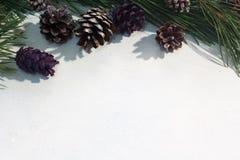 Festlicher Hintergrund der Winterdekoration Stockfotos