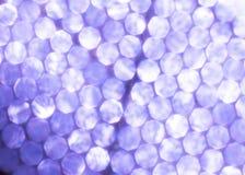 Festlig bakgrund för purpurfärgade metalliska ljus Abstrakt jul blinkade ljus bakgrund med bokeh fokuserade åter silverljus Arkivfoto