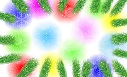 Festlig bakgrund med filialerna av julträdet Royaltyfria Bilder