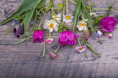 Festlig blommasammansättning på den vita träbakgrunden Över huvudet sikt Royaltyfri Fotografi