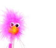 festlig fågel Royaltyfria Foton
