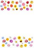 Festlig ram av färgrika blommor Royaltyfri Bild