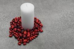 Festlig stearinljus med torkade bönor Royaltyfri Bild