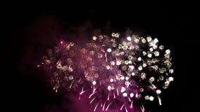 Festliga fyrverkerier, ljusa belysningar stock video