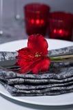 Festligt bordlägga inställningen Royaltyfria Bilder