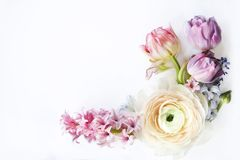 Festligt inbjudankort med härliga blommor Royaltyfria Bilder