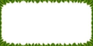 Festligt realistiskt gran-träd för nytt år baner med julträdfilialer och utrymme för text stock illustrationer